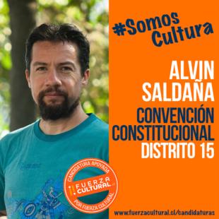 ALVIN SALDAÑA – Convención Constitucional D15