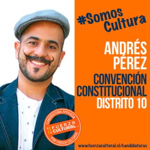 ANDRÉS PÉREZ – Convención Constitucional D10