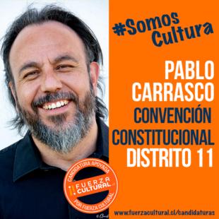 PABLO CARRASCO – Convención Constitucional D11