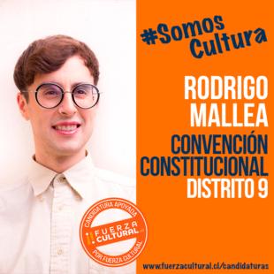 RODRIGO MALLEA – Convención Constitucional D9