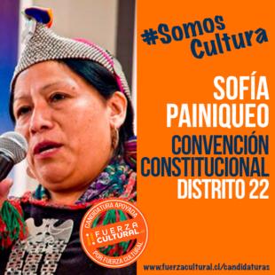 SOFÍA PAINIQUEO – Convención Constitucional D22
