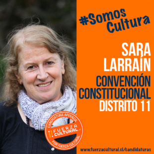 SARA LARRAÍN – Convención Constitucional D11