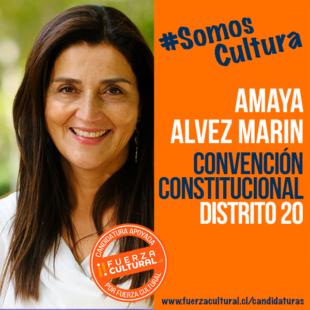 AMAYA ALVEZ MARÍN – Convención Constitucional D20