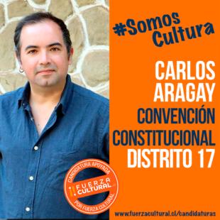 CARLOS ARAGAY – Convención Constitucional D17