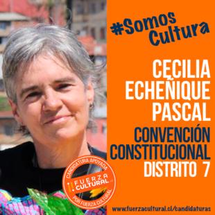 CECILIA ECHEÑIQUE PASCAL – Convención Constitucional D7