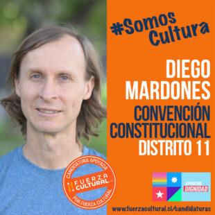 DIEGO MARDONES – Convención Constitucional D11