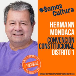 HERMANN MONDACA RAITERI – Convención Constitucional D1