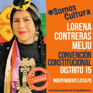 LORENA CONTRERAS MELIU – Convención Constitucional D15