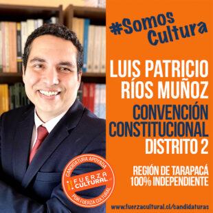 LUIS PATRICIO RÍOS – Convención Constitucional D2