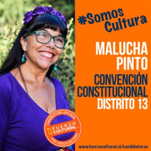 MALUCHA PINTO – Convención Constitucional D13