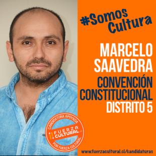 MARCELO SAAVEDRA – Convención Constitucional D5