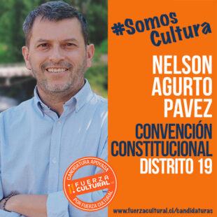 NELSON AGURTO – Convención Constitucional D19