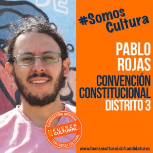 PABLO ROJAS VARAS – Convención Constitucional D3