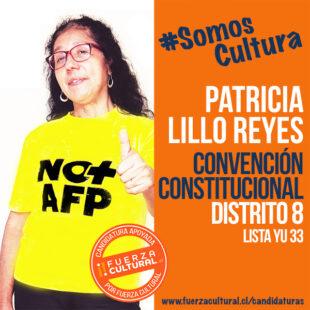 PATRICIA LILLO – Convención Constitucional D8