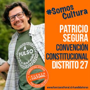 PATRICIO SEGURA – Convención Constitucional D27