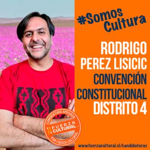 RODRIGO PEREZ – Convención Constitucional D4