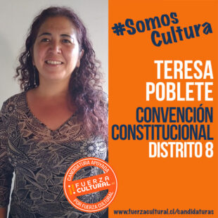 TERESA POBLETE – Convención Constitucional D8