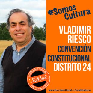 VLADIMIR RIESCO – Convención Constitucional D24