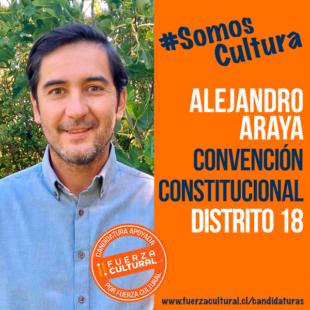 ALEJANDRO ARAYA – Convención Constitucional D18