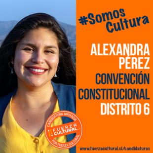 ALEXANDRA PÉREZ – Convención Constitucional D6