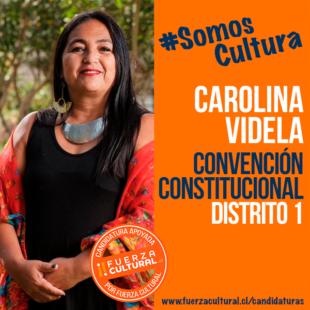 CAROLINA VIDELA – Convención Constitucional D1