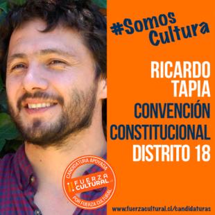 RICARDO TAPIA – CONVENCIÓN CONSTITUCIONAL D18