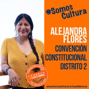 ALEJANDRA FLORES – CONVENCIÓN CONSTITUCIONAL D2