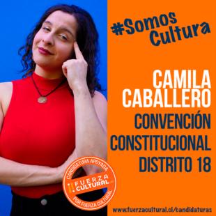 CAMILA CABALLERO – CONVENCIÓN CONSTITUCIONAL D18
